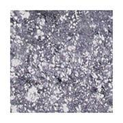 Stila Magnificent Metals Foil Finish Eyeshadow 2ml (Various Shades) - Metallic Lavender